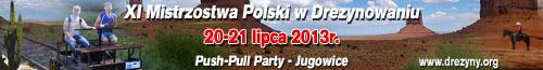 Banner - XI Mistrzostwa Polski w Drezynowaniu